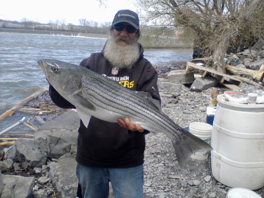 Mark catches Stripers